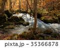 奥入瀬渓流 阿修羅の流れ 35366878