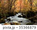 奥入瀬渓流 阿修羅の流れ 35366879