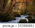 奥入瀬渓流 阿修羅の流れ 35366881