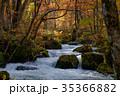 奥入瀬渓流 阿修羅の流れ 35366882