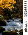 奥入瀬渓流 阿修羅の流れ 35366883