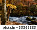 奥入瀬渓流 阿修羅の流れ 35366885