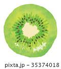 フルーツ・果物・キウイ 35374018