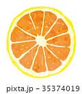 フルーツ・果物・オレンジ 35374019