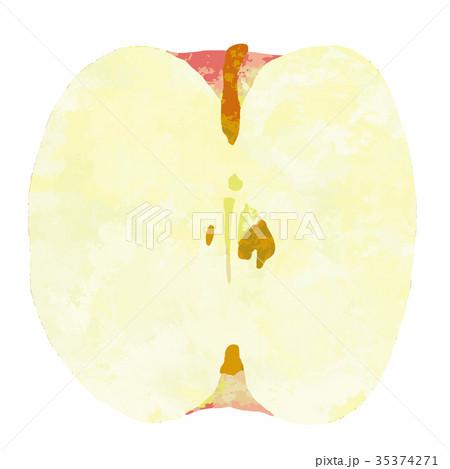 フルーツ・果物・リンゴ 35374271