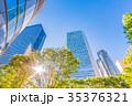 高層ビル 新緑 夏の写真 35376321