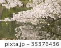 桜 花 春の写真 35376436