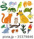 多彩 ペット 愛玩動物のイラスト 35379846