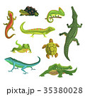 Reptiles and amphibians set of vector 35380028