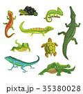 は虫類 ハ虫類 レプタイルのイラスト 35380028