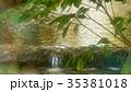 新緑 35381018