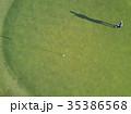 ゴルフをする女性 35386568