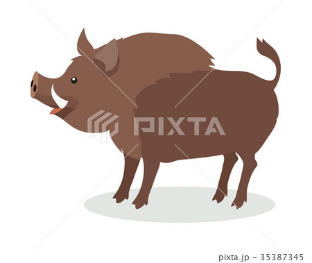 Wild Boar Cartoon Flat Vector Illustration 35387345