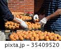 フルーツ 果物 果実の写真 35409520