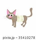 ねこ ネコ 猫のイラスト 35410278