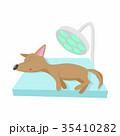 わんこ 犬 検査のイラスト 35410282