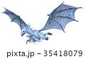 ドラゴン 35418079
