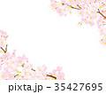 桜 春 花のイラスト 35427695