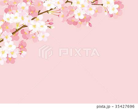桜 背景イラスト 35427696