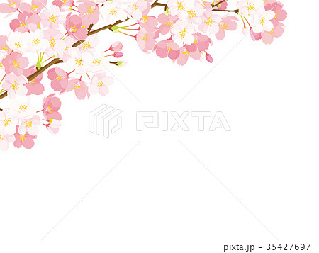 桜 背景イラスト 35427697