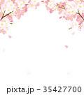 桜 春 花のイラスト 35427700