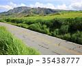 阿蘇パノラマライン 坊中線 阿蘇の写真 35438777