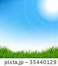 草 太陽 空のイラスト 35440129