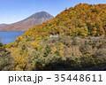 紅葉 山 秋の写真 35448611