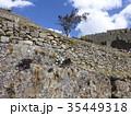 マチュピチュ 遺跡 インカ帝国の写真 35449318