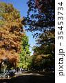 秋の石神井公園 35453734
