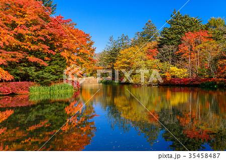 雲場池の紅葉 湖面に映り込む秋 35458487