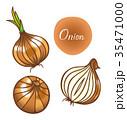たまねぎ 野菜 オニオンのイラスト 35471000