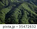 森 森林 風景の写真 35472632