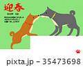 年賀状(茶色い犬と黒い犬) 35473698