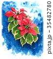ポインセチア 植物 花のイラスト 35482780