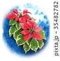 ポインセチア 植物 花のイラスト 35482782