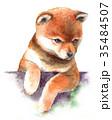 犬 水彩 子犬のイラスト 35484507