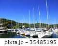 水辺風景(神奈川、三浦、油壷、夏) 35485195