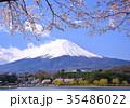 富士山 河口湖 花の写真 35486022
