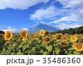 富士山 ひまわり 夏の写真 35486360