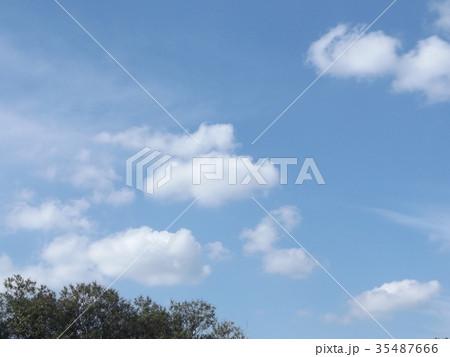 秋の稲毛海浜公園の青空と白い雲 35487666
