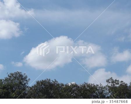秋の稲毛海浜公園の青空と白い雲 35487668