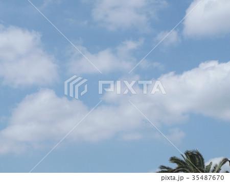 秋の稲毛海浜公園の青空と白い雲 35487670