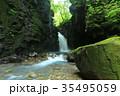 渓谷 新緑 夏の写真 35495059