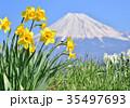 富士山 山 世界遺産の写真 35497693