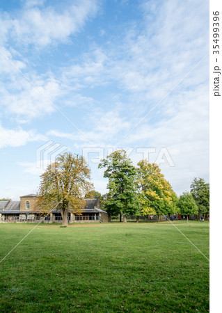 芝生の中に立つ大木と横長のレンガ造りの建物の写真素材