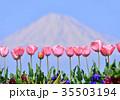 富士山 山 世界遺産の写真 35503194