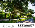 台湾 旅行 公園の写真 35509057