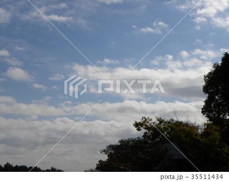 秋の稲毛海浜公園の青空と白い雲 35511434