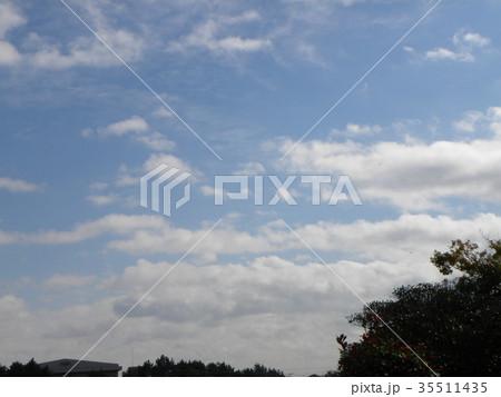 秋の稲毛海浜公園の青空と白い雲 35511435